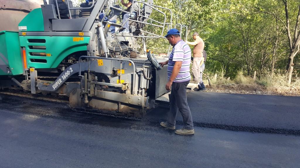 Petre Emanoil Neagu: Dezvoltarea Județului Buzău depinde de reabilitarea infrastructurii de transport